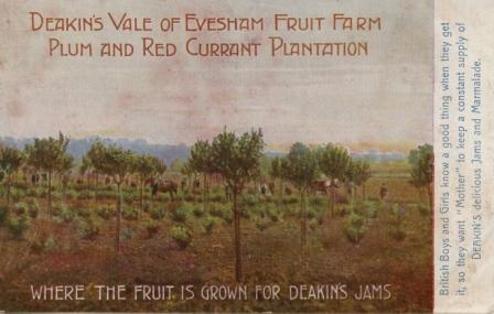 Deakin's jam in the Vale of Evesham